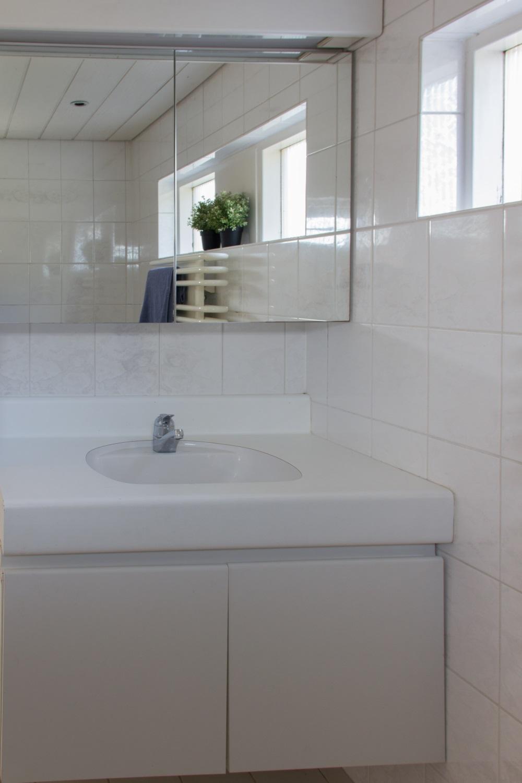 Klein Kastje Badkamer.Restylen Van Je Huis Voor Verkoop De Badkamer Makelaarsland
